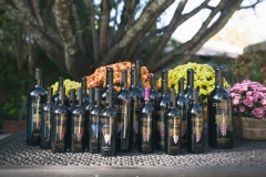 Cabernet-Sauvignon-Library-Wines